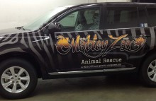 Cars Vans & Trucks Motley Zoo Animal Rescue Wrap