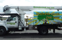 Box Trucks, Buses & Trailers Sonshine_Tree_Care_FB